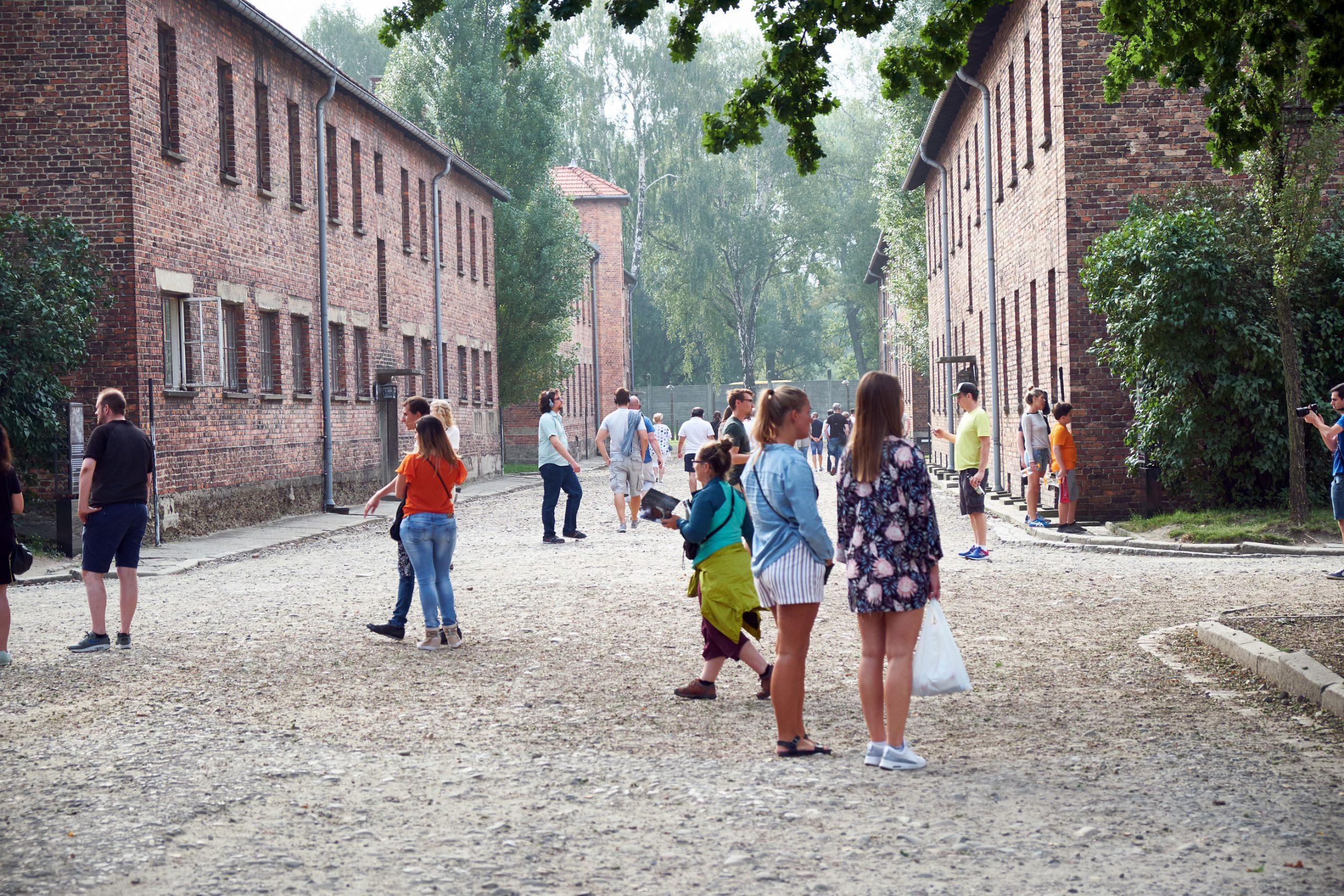 Auschwitz guidet tur
